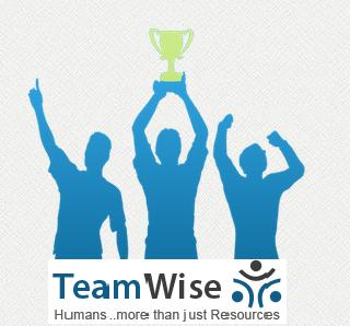 TeamWise
