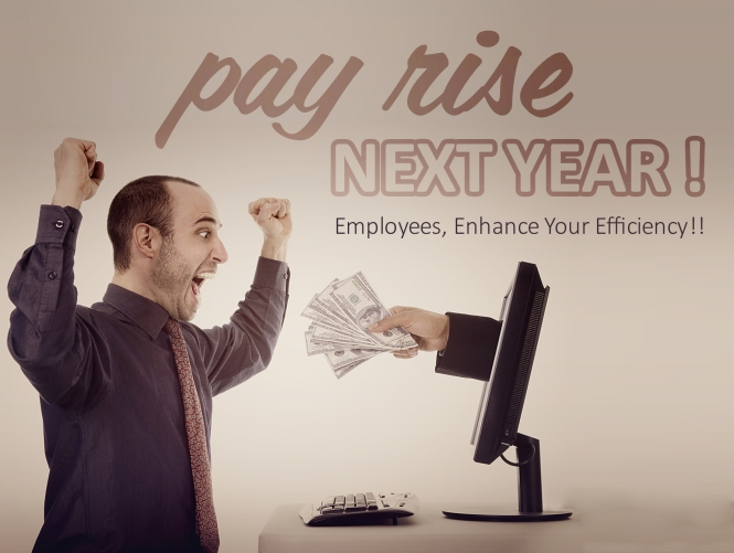 TeamWise-pay-raise